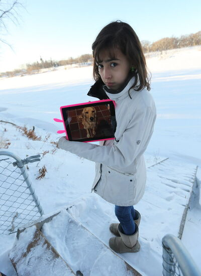 Carolina Amador, 11, shows off a photo of her dog Talia on Sun., Dec. 29, 2013. Talia, a 16-month-old female cocker spaniel cross was found Thursday after going missing for a week. She ran away from the family's Glenwood Drive yard and onto the Red River just a day after moving to Winnipeg from Colombia.