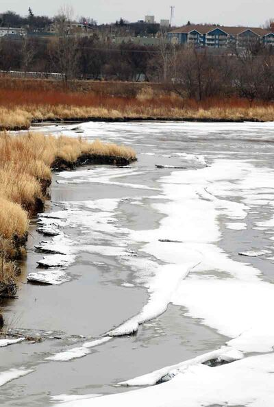 Ice on the Assiniboine River started to break up along the south bank of the river on Tuesday.