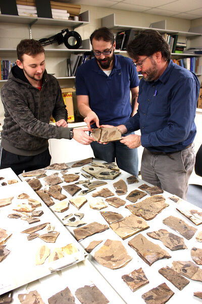 Students Cale Gushulak and Christopher West join Brandon University researcher David Greenwood to examine plant fossils as part of a project to reconstruct climates during the Eocene Epoch. Their findings, published in the European geosciences journal Climate of the Past, suggest prehistoric Earth was lusher than previously imagined —  a rainforest from pole to pole.