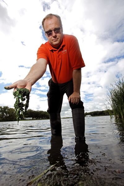 In this August 2013 photo, Killarney-Turtle Mountain Mayor Rick Pauls stands in Killarney Lake showing some of the blue-green algal blooms that have plagued the area.
