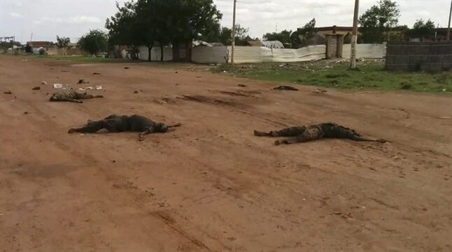 EDS NOTE GRAPHIC CONTENT In this image taken from video dead bodies lie on the road near Bentiu South Sudan on Sunday April 20, 2014. U.N.'s top humanitarian official in south Sudan Toby Lanzer told The Associated Press in a phone interview Tuesday April 23, 2014, that the ethnically targeted killings are