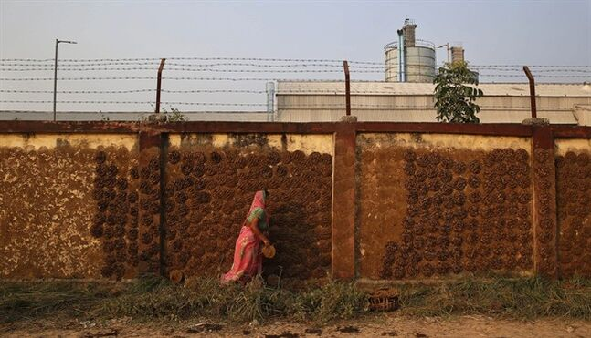 In this Nov. 23, 2013 photo, a village woman scrapes out cow dung cakes left to dry out on the outer walls of Ramco Industries Ltd. factory which manufactures asbestos products in Bhojpur district of Bihar state, India. Activists lobbying to end the use of asbestos in India say that wind blowing out asbestos fibers left around in the factories harm villagers living nearby as they have to get into close proximity of the factories for one reason or the other. (AP Photo/Saurabh Das)