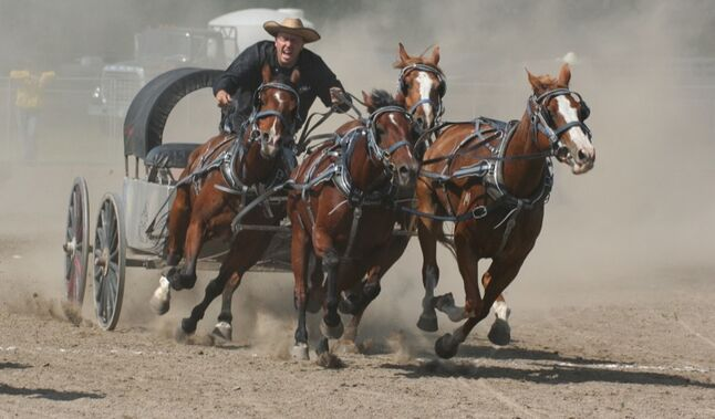 Paul Neufeld of Brandon takes the lead of the fourth heat at the chuckwagon races at the Killarney fair on Saturday.