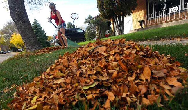 Raking up huge piles this spring? The city will pick up extra yard waste this month.