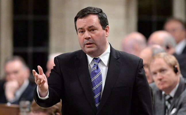 Minister of Employment and Social Development Jason Kenney in December 2013. THE CANADIAN PRESS/Sean Kilpatrick