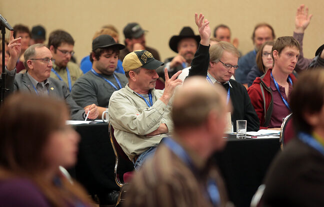 Members of the Manitoba Beef Producers vote on resolutions during their 35th annual general meeting at the Victoria Inn on Tuesday afternoon.