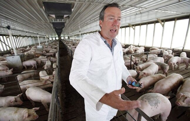 An Iowa farmer and longtime veterinarian talks about his animals affected by porcine epidemic diarrhea on July 9, 2009. THE CANADIAN PRESS/AP, Charlie Neibergall