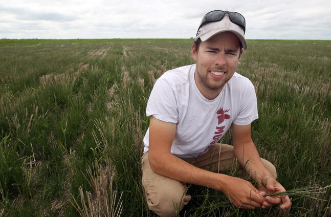 Evan Rasmussen, who farms west of Headingley, supplied grass seed to this year's World Cup.
