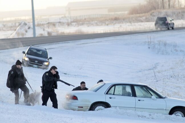 With guns drawn, Brandon Police Service members take down a suspect (obstructed by the vehicle) in a string of car robberies after a stolen Buick LeSabre hit the ditch on Highway 110 east of Brandon after a police pursuit on Tuesday morning. Two suspects, a man and a woman, were taken into custody.