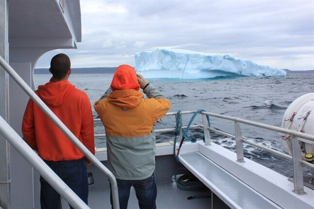 Nathan Stanley and Steve Lake look at an iceberg in the North Atlantic off St. John's, N.L., aboard Iceberg Quest Ocean Tours. THE CANADIAN PRESS/ho-Mike Wert