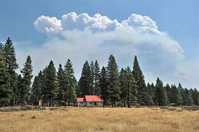 Plumes of smoke rise from the Oregon Gulch Fire burning south of Highway 66 in the area of the Soda Mountain Wilderness in Oregon. Officials said the fire was started by lightning on Thursday. (AP Photo/Medford Mail Tribune, Jamie Lusch)