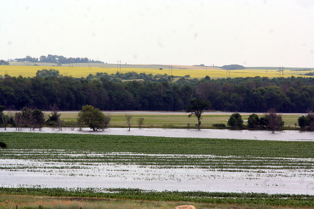 In this July 2012 photo, rows of crop north of Alexander are under water after the Assiniboine River overflowed its banks near the Shellmouth Dam. Farmers in the area face a similar situation this year.
