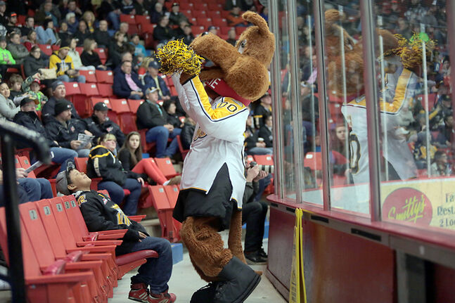 Brandon Wheat Kings mascot Willie gets the crowd revved up during a playoff game against the Regina Pats at Westman Place in March. The Wheat Kings are looking to boost their season-ticket sales to reverse a drop in attendance.