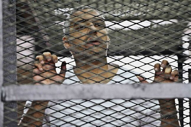 Mohammed Fahmy, Canadian-Egyptian acting bureau chief of Al-Jazeera, appears in a defendant's cage along with several other defendants during their trial on terror charges at a courtroom in Cairo, Egypt, Thursday, May 15, 2014. Three lawyers representing Al-Jazeera English journalists on trial in Egypt abruptly have quit the case, accusing the Doha-based network of using the arrest of their staff to tarnish Egypt's image. (AP Photo/Hamada Elrasam)