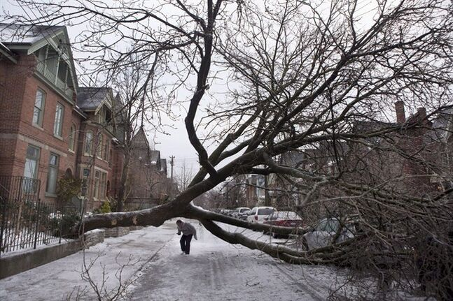 A pedestrian walks under a tree blocking Wellesley Street East following an ice storm in Toronto on Monday, Dec. 23, 2013. The past 12 months or so have given millions of Canadians first-hand experience with why governments urge them to develop household emergency plans that include stores of non-perishable food, bottled water and extra prescription drugs. THE CANADIAN PRESS/Matthew Sherwood