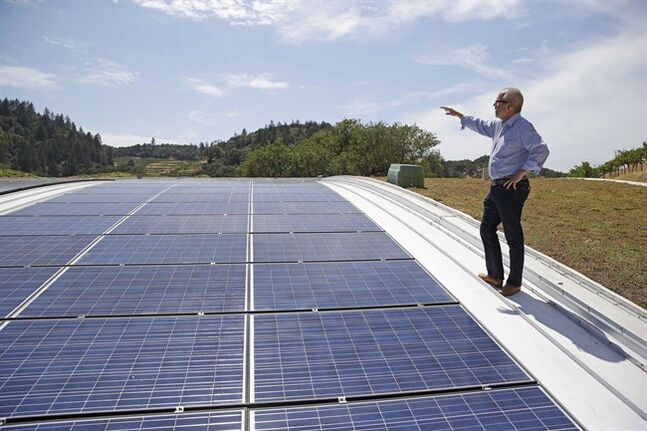 "In this photo taken Wednesday, July 16, 2014, Christian Oggenfuss stands near solar panels on top of the living roof at the Odette Estate winery in Napa, Calif. Odette Estate, which opened recently, is part of a small but blossoming trend of green-roofed wineries. Their roof combines 8,500 square feet of planted living roof with 2,500 square feet of solar panels. ""It's really cool working underneath something you know is helping the environment and not impacting it in a negative way,"" says Oggenfuss, director of marketing for the winery. ""I'm pretty proud, actually, that this spot right now is greener than it was when we started."" ( AP Photo/Eric Risberg)"