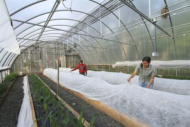 Stephanie Gaiser, right, and her son, Seth, place a cover for added protection over a raised bed planted with eggplant inside the family's seasonal high tunnel on Friday, May 23, 2014, in Palmer, Alaska. The USDA's Natural Resource Conservation Service offers financial assistance to growers using the tall hoop houses to extend growing seasons, and has awarded more funding to Alaska for them than any other state. (AP Photo/Dan Joling)