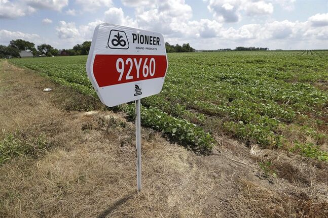 FILE - In this Wednesday, July 31, 2013, file photo, a DuPont Pioneer seed sign is placed in a bean field, Wednesday, July 31, 2013, in Johnston, Iowa. DuPont reports quarterly earnings on Tuesday, Jan. 28, 2014. (AP Photo/Charlie Neibergall, File)