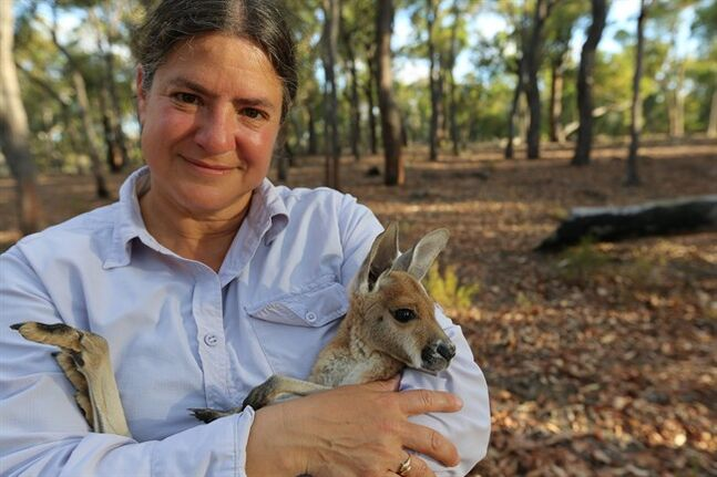 This image released by PBS shows anatomist Joy Reidenberg with a baby kangaroo from the four-part series,