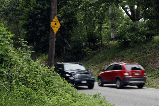 Cars pass a toad crossing sign, Wednesday, June 11, 2014, in the Roxborough neighborhood of Philadelphia. A humid and rainy summer night makes for quite a rush hour in Philadelphia as thousands of baby toads try to hop across a busy street. (AP Photo/Matt Slocum)