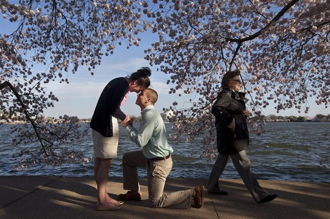 FILE - This April 10, 2014 shows a woman walking past as Steven Paska, 26, center, of Arlington, Va., asks his girlfriend of two years Jessica Deegan, 27, to marry him as cherry blossom trees in peak bloom line the tidal basin with the Jefferson Memorial in the background in Washington. Deegan said yes to the surprise marriage proposal. Society's actual gender roles are shifting, with women making up more breadwinners than ever before and more likely than men to earn a college degree. But when it comes to dating, Americans' attitudes toward money and gender roles hew to the traditional and sometimes conflict, according to a new Associated Press-WE tv poll. Seven in 10 in the survey say it's unacceptable to expect a date to pay for everything, but most say it's still a man's job to pay for a first date. (AP Photo/Jacquelyn Martin, File)