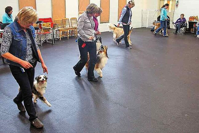 Dog lovers take part in a seminar on how to dance with their dogs at the Paw Resort and Wellness Centre on Sunday.