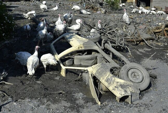 Turkeys move around a a car buried in mud and rubble after a landslide at the village of Topcic Polje, near the Bosnian town of Zenica, 90 kilometers north of Sarajevo, Bosnia-Herzegovina, Tuesday May 20, 2014. Bosnia, Serbia and Croatia have been hit by the worst flooding in more than 100 years, forcing half a million people out of their homes and leading to more than three dozen deaths. (AP Photo/Sulejman Omerbasic)
