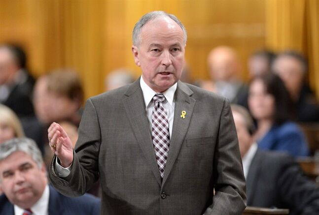 Minister of Defence Rob Nicholson responds to a question during question period in the House of Commons on Parliament Hill in Ottawa on Wednesday, February 12, 2014. THE CANADIAN PRESS/Sean Kilpatrick