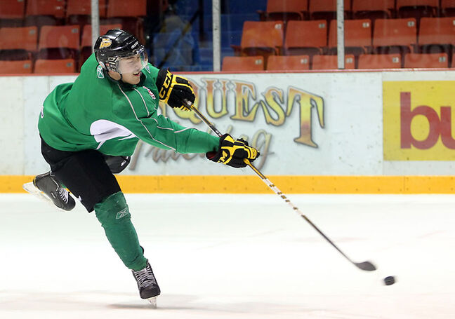 Brandon Wheat Kings' rookie Daniel Asham is working on developing his all-around game.
