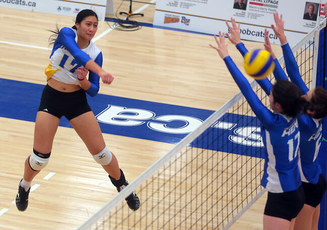New Zealand import Vaovai Aiono of the Brandon University Bobcats was named to the CIS women's volleyball all-rookie team.