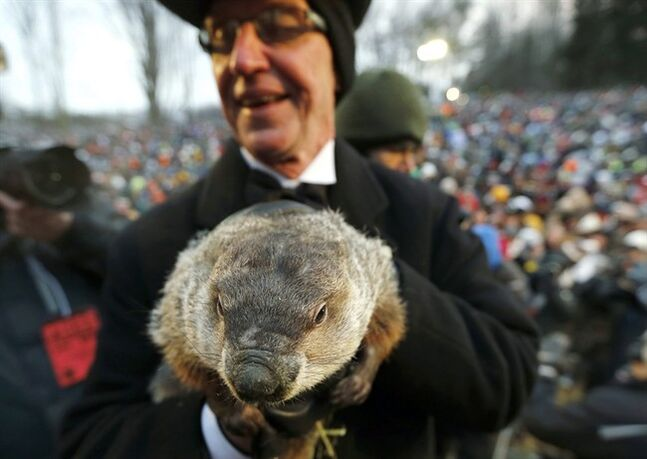 FILE - In a Saturday, Feb. 2, 2013 file photo, Groundhog Club co-handler Ron Ploucha holds the weather predicting groundhog, Punxsutawney Phil, after the club said Phil did not see his shadow and there will be an early spring, on Groundhog Day, in Punxsutawney, Pa. Groundhog Day coincides with the Super Bowl for the first time on Sunday, Feb. 2, , but Punxsutawney Phil's people say they don't expect the big game to steal his early morning spotlight. the Punxsutawney Groundhog Club expects about 20,000 revelers to gather around Gobbler's Knob when western Pennsylvania's world-famous rodent emerges from his lair just after dawn Sunday. (AP Photo/Keith Srakocic, File)