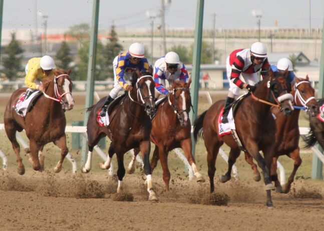 Jet Again, middle-back, with the jockey wearing red, white and blue, couldn't become the fourth Manitoba-bred horse to win the Manitoba Derby yesterday in Winnipeg.
