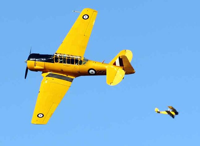 A Harvard aircraft banks past spectators, with the Commonwealth Air Training Plan Museum's Tiger Moth in the background, during the Yellow Wings of History demonstration air show at the Brandon Municipal Airport on Thursday.