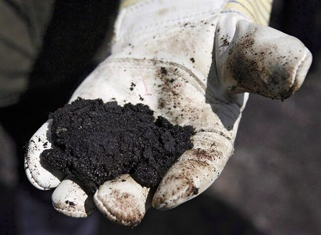 An oil worker holds raw tar sand near Fort McMurray, on July 9, 2008. THE CANADIAN PRESS/Jeff McIntosh