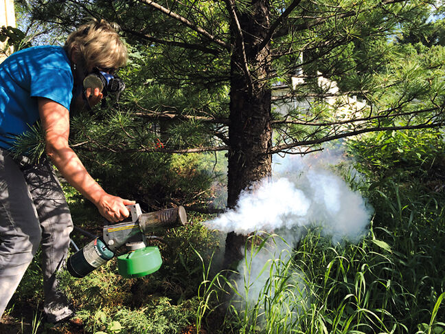 Using the insecticide propoxur, a Brandon homeowner fogs for mosquitoes and other pests around her yard, which is in a buffer zone.