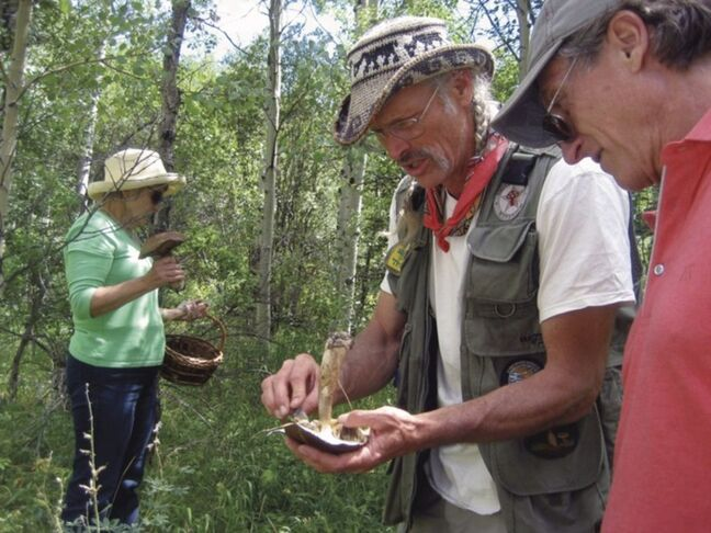 This Aug. 4, 2012 photo shows guide Larry Evans discussing a mushroom found during a mountain excursion organized by Four Seasons Resort Vail in Vail, Colo. For $200 a person, the Four Seasons Resort Vail is sending out guided expeditions in luxury SUVs to look for mushrooms. The Mushrooms & Mercedes program includes a lunchtime break with wine, cheese and prosciutto, and ends with a three-course mushroom-themed meal back at the hotel.(AP Photo/Catherine Tsai)