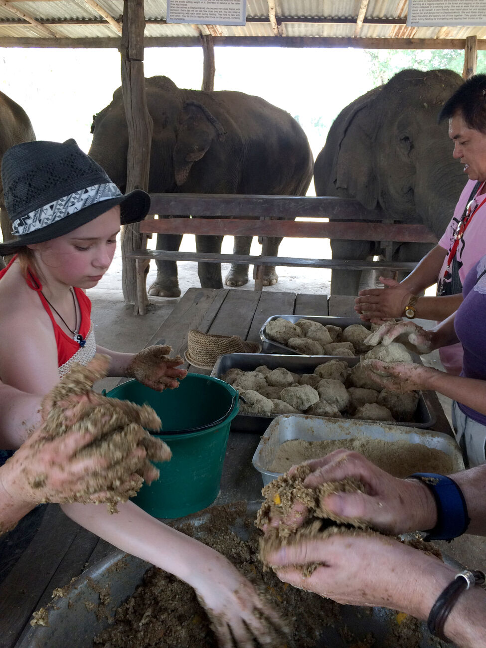 Visitors to the Elephants World sanctuary help make rice balls for the facility's older elephants, who have lost most of their teeth and can't eat their regular diet. Patrons of the rescue facility learn about interacting ethically as a tourist with Thailand's national animal, as well as putting in a little labour to help care for the gentle giants.