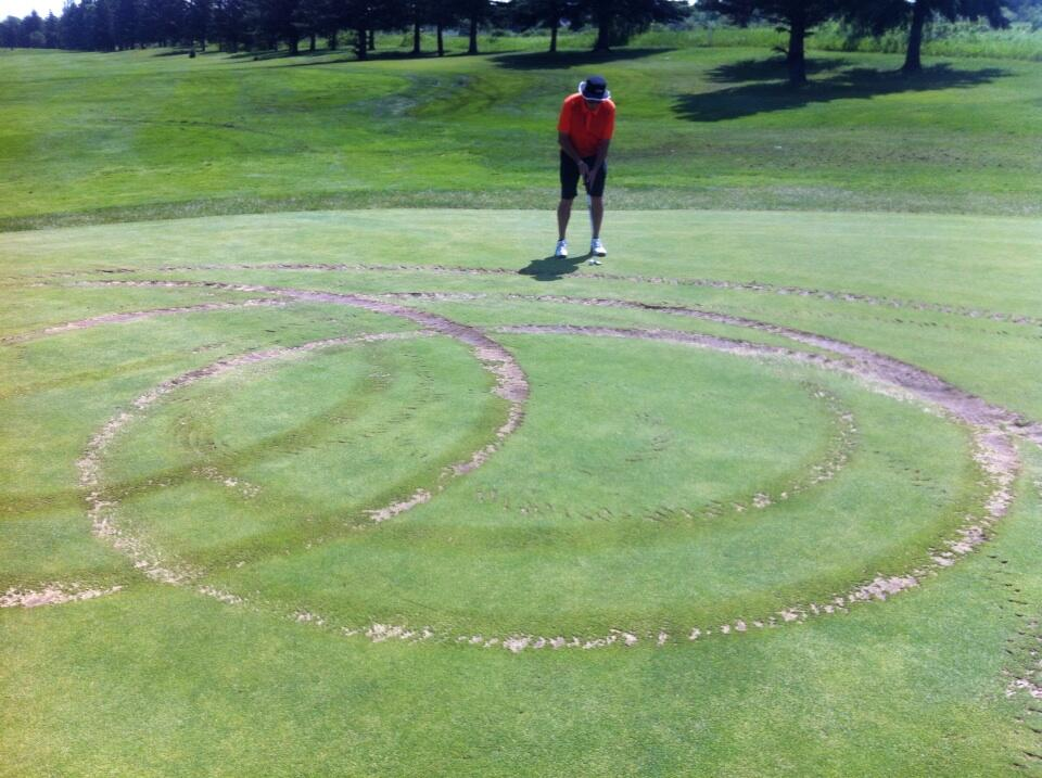 Vandals in an SUV tore strips out of greens and fairways at the just-re-opened Wheat City Golf Course.