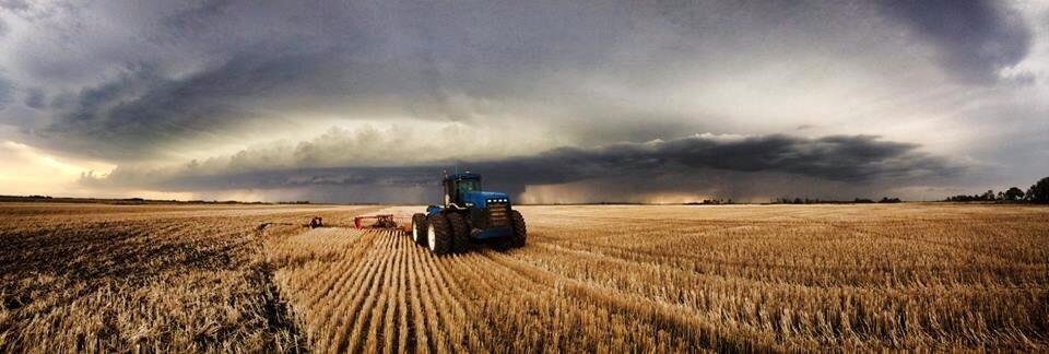 Field work continues despite the storm, north of Wawanesa on May 29. 