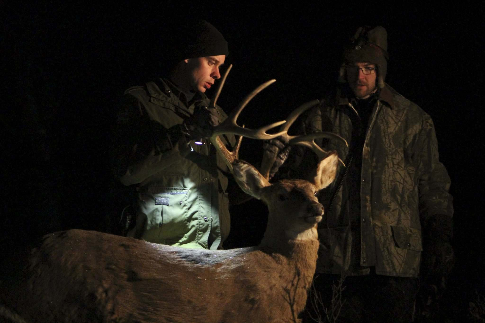 <p>Conservation officers Ian Van Nest (left) and Dawson Keen remove a mechanical deer decoy from the bush at the end of their operation to nab illegal night hunters.</p>